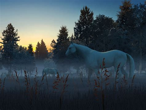 nature  screensavers fog horses  wallpaper
