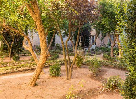 cortile spagnolo vecchio giardino spagnolo in cortile in sole di sera