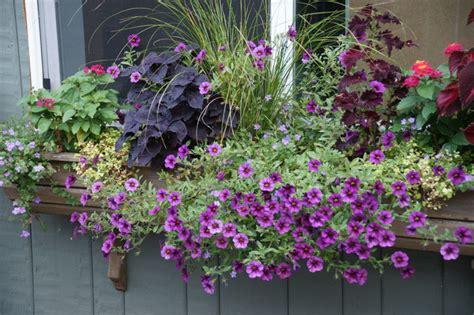 garden arrangements plant arrangements traditional landscape portland