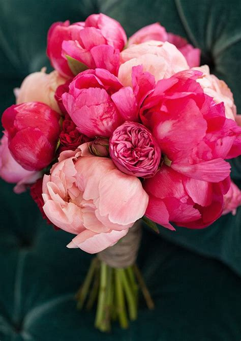 the pink peonies finding the right flowers for your wedding bouquet