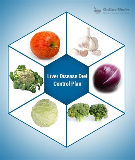 liver disease diet 1000 images about liver care on ayurvedic herbs fatty liver and health