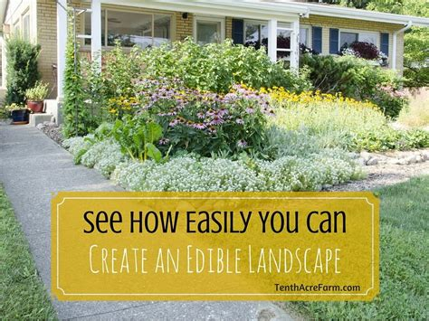 easily   create  edible landscape tenth