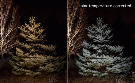 best color temperature for outdoor lighting best outdoor lighting system mclean and northern virginia