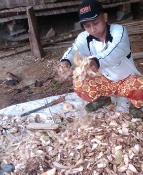 Pakan Ternak Hasil Fermentasi cara mudah membuat pakan fermentasi ternak kambing