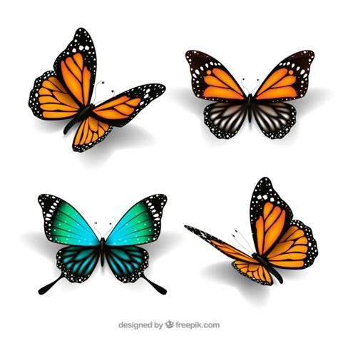 butterflies images butterfly vectors photos and psd files free