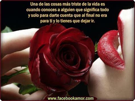 imagenes con rosas y frases bonitas frases con imagenes bonitas de rosas youtube
