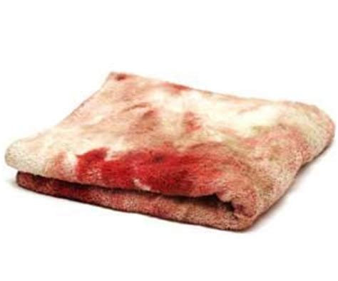 how to get rid of blood stains on couch how to get rid of blood stains how to get rid of stuff