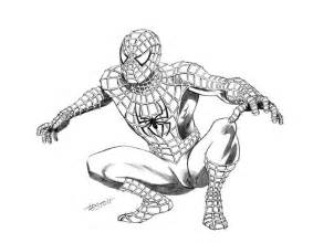 spiderman drawing best images collections hd for gadget windows mac android