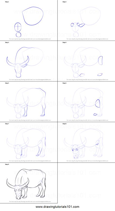 doodle drawing how to how to draw a buffalo printable step by step drawing sheet