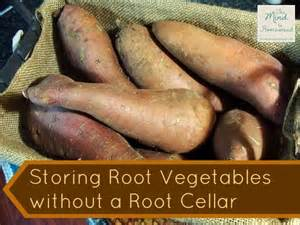 storing root vegetables storing root vegetables without a root cellar gardening