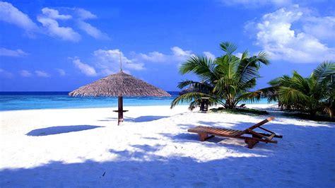 Fito Green Original Denpasar Bali bali is a paradise island wac magazine