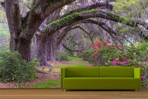 wall mural paper enchanted forest theme bedroom enchanted forest surprised 3d wall murals the 3d mural idea is