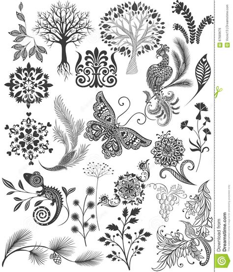various pattern in c set different patterns and decorations graphic drawings