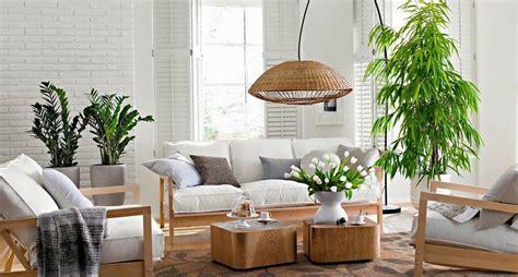 Feng Shui Dining Room Colors by C 243 Mo Decorar Con Plantas De Interior La Lista De Mi Suegra