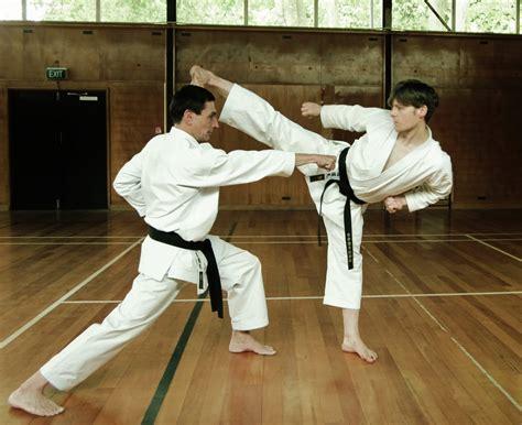 video tutorial karate andr 233 bertel s karate do january 2012