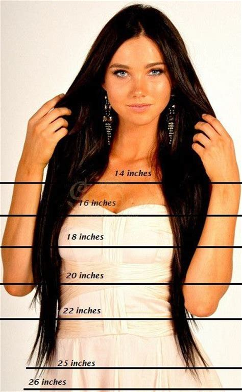 12inch hair styles 17 best ideas about hair length chart on pinterest