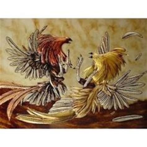 pelea de gallos en cupey san juan pr foto ang233lica allen peleas de cockfighting in puerto rico san juan deportes y noche