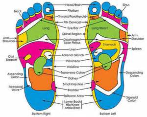 Reflexology training academy of natural health sciences