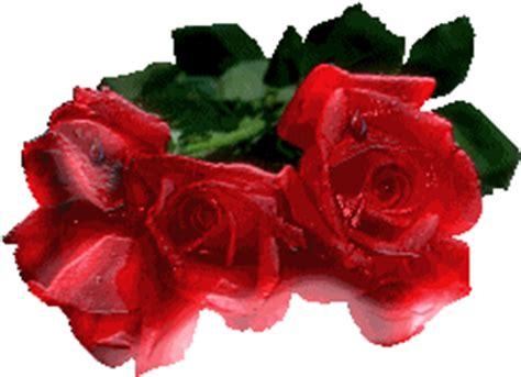 imagenes gif de amor y flores gifs animados de rosas y flores animaciones de rosas y flores
