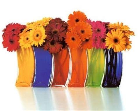 foto di vasi di fiori vasi di fiori vasi tipologie vasi di fiori