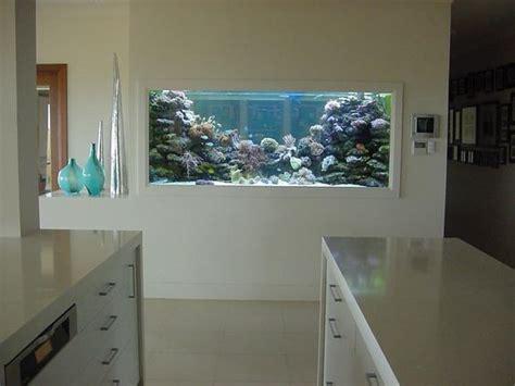 disenos de peceras  decorar tu casa  decoracion