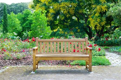 a bench in the park wooden bench in the park stock photo 169 alinamd 18651043