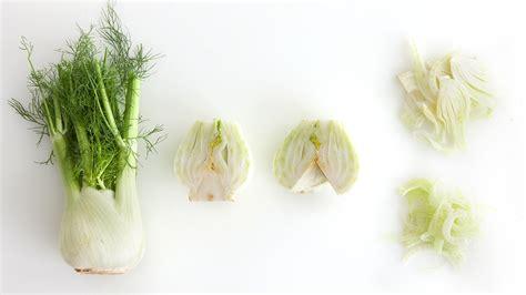 video how to cut a fennel bulb martha stewart