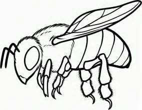 abelha realista colorir hd desenhoswiki
