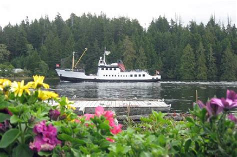lady rose boat tours the mv frances barkley at bamfield picture of lady rose