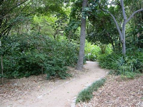 Amateurs Are Shown How They Can Create A Similar Mildred Mathias Botanical Garden