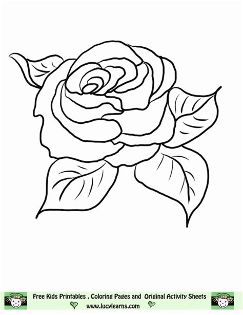 printable rose templates printable rose pictures 345493