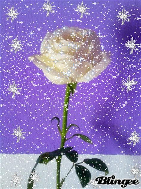 larosa de guadalupe la rosa de guadalupe picture 127182288 blingee com