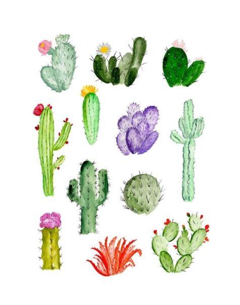 wallpaper iphone cactus cactus wallpaper tumblr