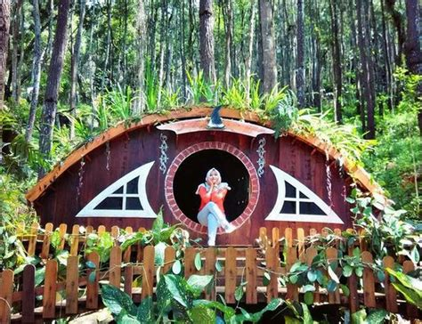 membuat rumah hobit rumah hobbit bisa jadi alternatif liburan bersama keluarga