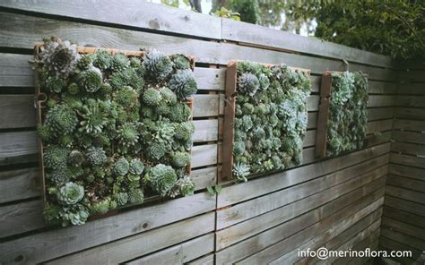 1000 images about vertical succulent gardens on