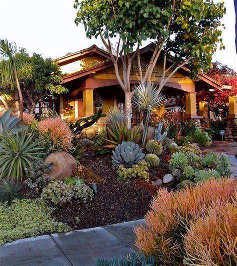 succulent front yard design beautiful succulent landscape via plantbuckner landscape