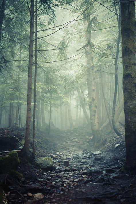 ver imagenes insolitas naturaleza los mejores wallpapers de naturaleza que tienes que ver