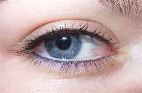 tattoo eyeliner wet line 10 best permanent eyeliner images on pinterest permanent