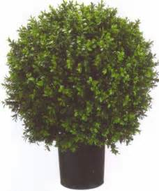 artificial 24 quot outdoor uv boxwood topiary tree 2 bush