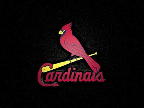 Cardinals Backgrounds