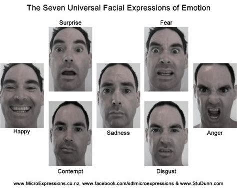test linguaggio corpo why study micro expressions and the formae mentis