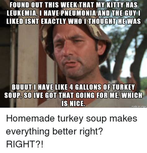 Leukemia Meme - found out this week that my kitty has leukemiai have