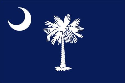 south carolina flag tattoo designs best 25 south carolina flag ideas on palmetto
