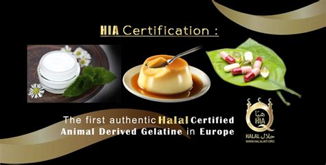 gelatina alimentare ingredienti halal italy la prima gelatina halal di origine animale