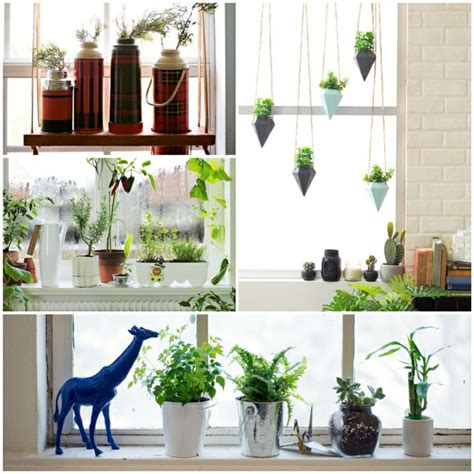 fensterbrett dekoration fensterbank deko die farben der natur durch pflanzen