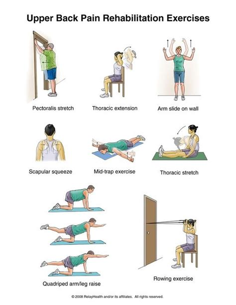 therapy exercises back rehabilitation exercises rehabilitation