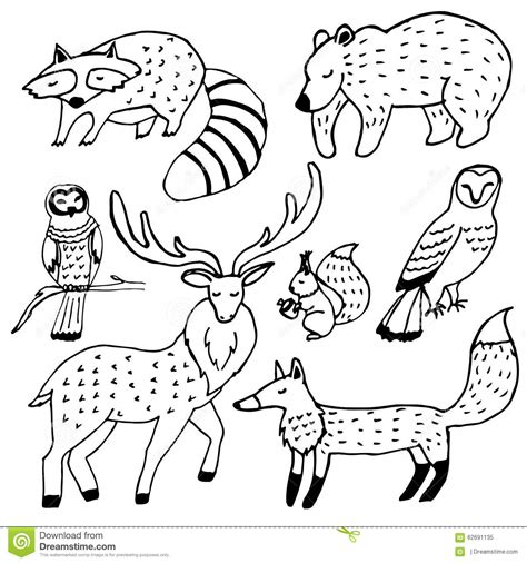 Forest Animals Drawings Ink Set Stock Vector