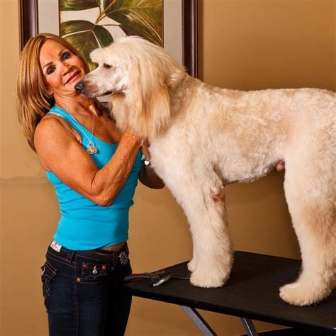 Will Grooming Help Shedding by Clip N Dip Boutique Groomer Offering Professional