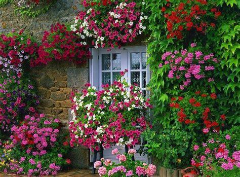 wallpaper bunga di taman taman bunga mini check out taman bunga mini cntravel