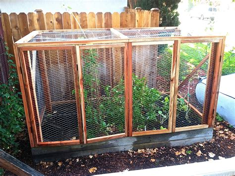 how to keep mice away from your bed protect that precious garden hope gardenshope gardens